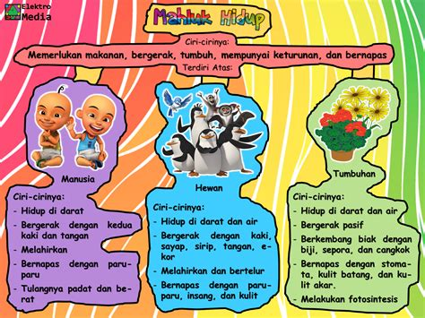 Poster Anak Pengenalan Karakter Binatang gambar 16 gambar kelinci kartun heboh kumpulan update