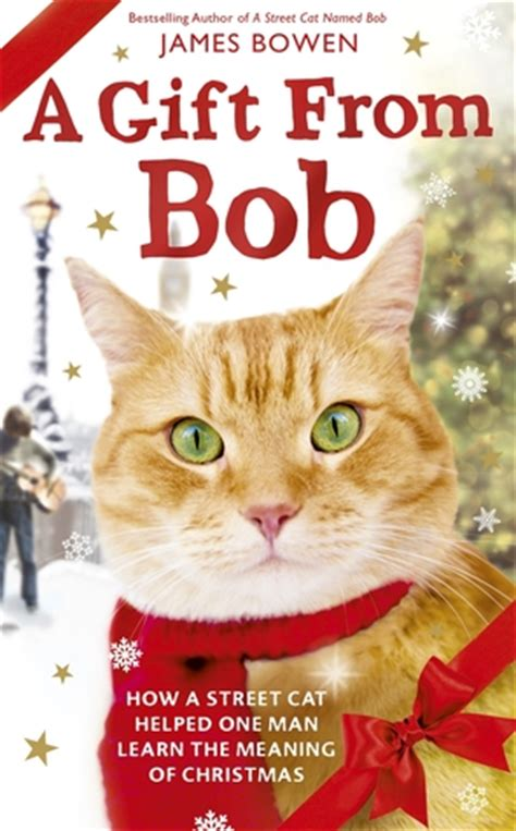 is for cat a gift book books a gift from bob how a cat helped one learn the