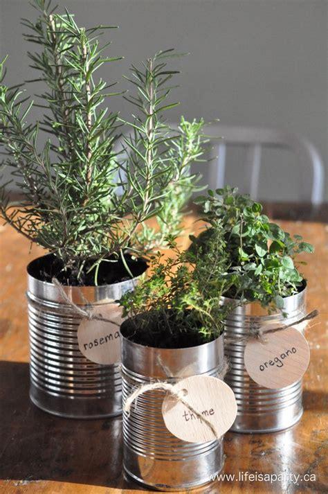 tin can garden 13 diy ideas to make your own herb garden