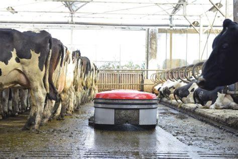 robot per pulizia pavimenti il robot per la pulizia delle stalle con pavimenti pieni