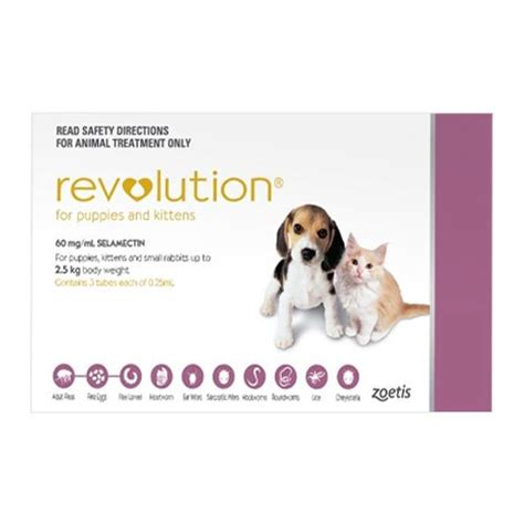heartworm revolution dogs for revolution for dogs buy revolution heartworm and flea prevention for dogs