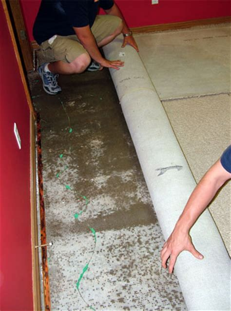 Total Basement Finishing: Why We're The Best!   Basement
