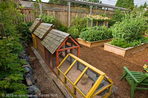 backyard chicken farming these colorful chicken coops and the raised beds are a