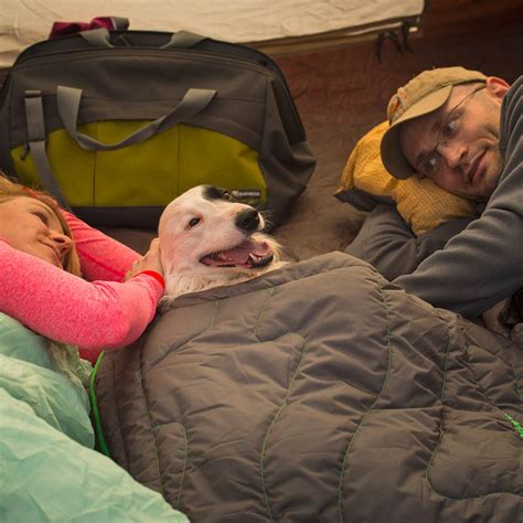 bed sleeping bag sleeping bag dog bed blue dog beds and costumes