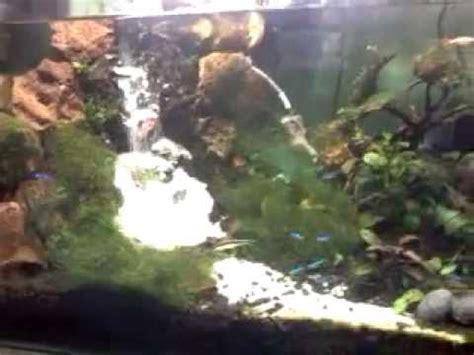 membuat air terjun aquascape youtube aquarium air terjun aquascape youtube