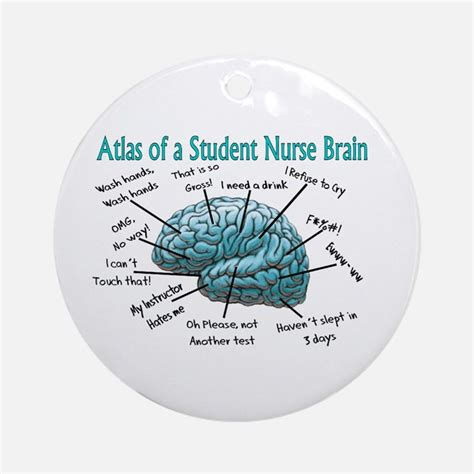 nursing ornaments student ornaments 1000s of student ornament