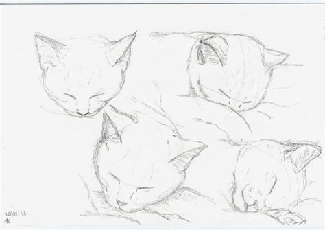 portrait89 sketches sketching a cat is never easy unless it sleeps