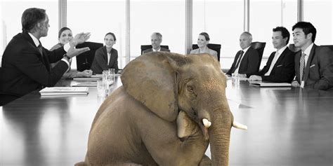 elephants in the room the tax elephant in the room wayne swan