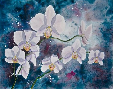 orchids and watercolor 95th birthday orchid by carolyn schiffhouer from fotm orchidaceae exhibit