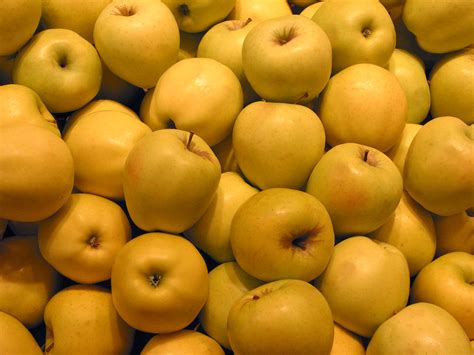 fruit yellow free apples photo green apples picture yellow apples