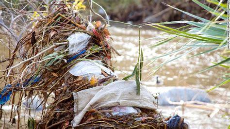 california plastic bag ban delayed money