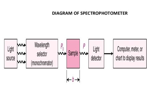 how a spectrophotometer works diagram spectrophotometry
