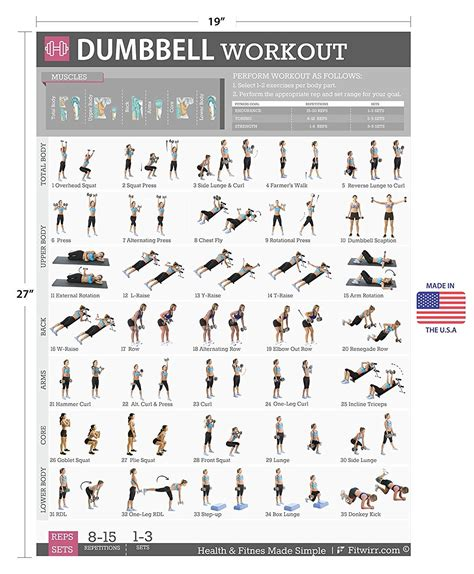 free home workout plans dumbbell exercises workout poster now laminated