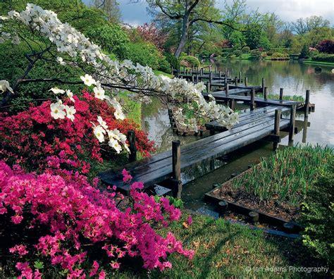 Gardens Missouri Botanical Garden Press