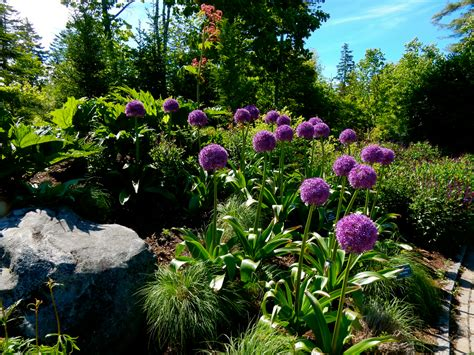 Mid Coast Botanical Gardens Maine Boothbay Maine Yep It S The Harbor Getaway Mavens