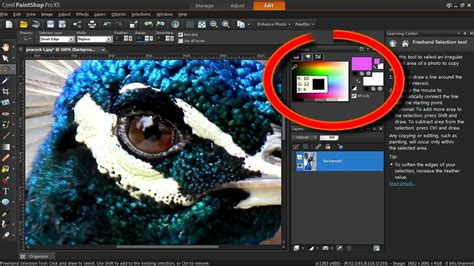 the color changer tool in corel paintshop pro x5