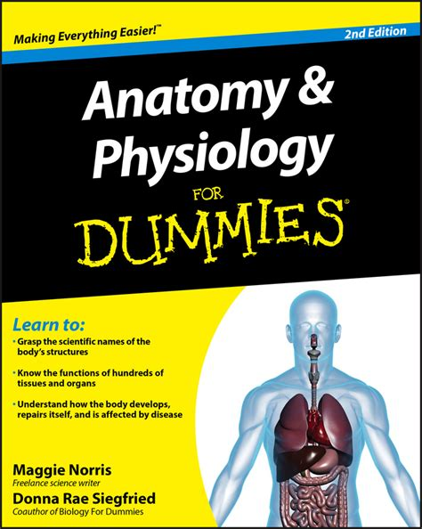 human anatomy physiology 2nd edition books anatomy and physiology for dummies by maggie norris donna