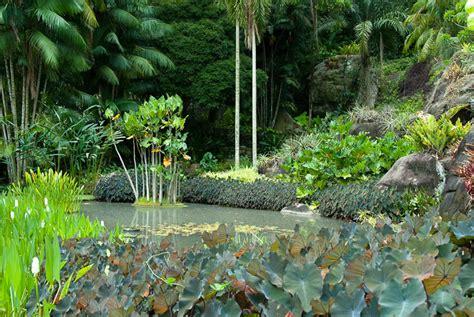 gardens of roberto burle marx