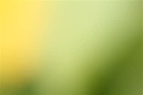 background yellow green yellow green blur background free stock photo public