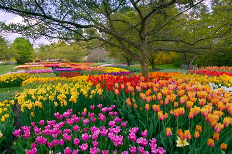 Flower Gardens In Pa 7 Of The World S Most Spectacular Gardens To Visit This