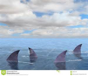 Business Awning Prices Sharks Shark Fin Sea Ocean Stock Illustration Image