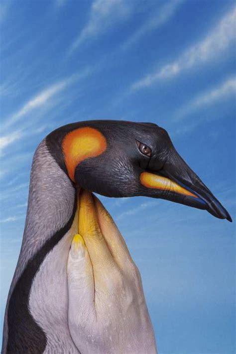 painting penguin 50 stunning animal paintings by guido daniele ginva