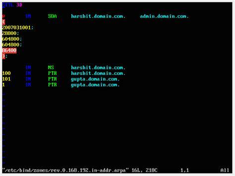 configure ubuntu server dns virtualbox problem configuring dns on ubuntu server
