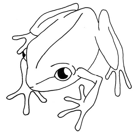 the coqui clean line clipart best clipart best