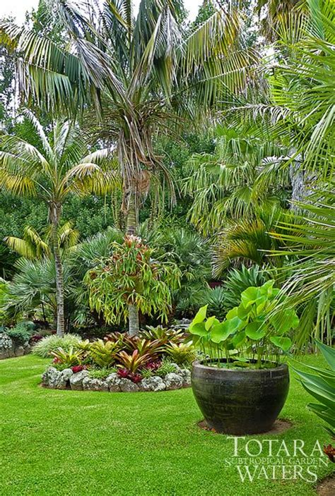 Lotus Bowl At Totara Waters Sub Tropical Garden Garden Subtropical Garden Design Ideas