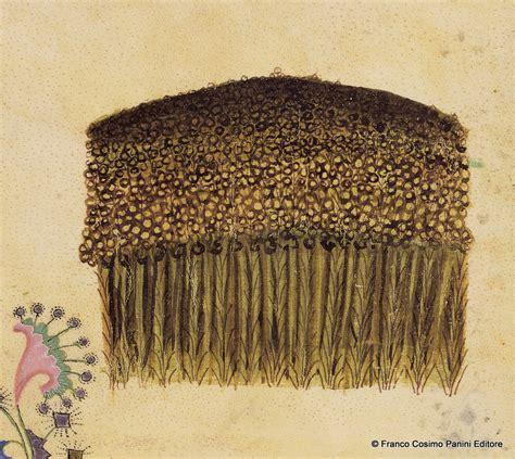 come utilizzare i semi di lino in cucina semi di lino benefici 5 ricette omega 3 pane in casa