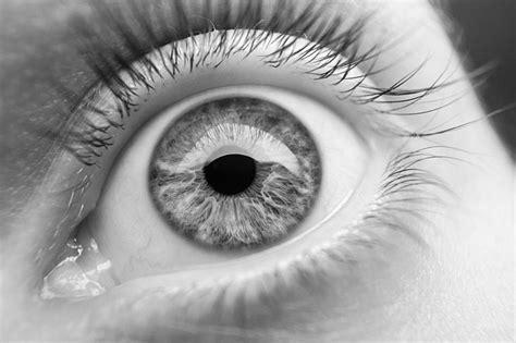 imagenes del zika en blanco y negro 11 consejos clave en fotograf 237 a en blanco y negro