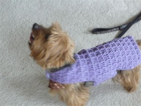 crochet pattern for dog coat 17 best images about dog sweater on pinterest chihuahuas
