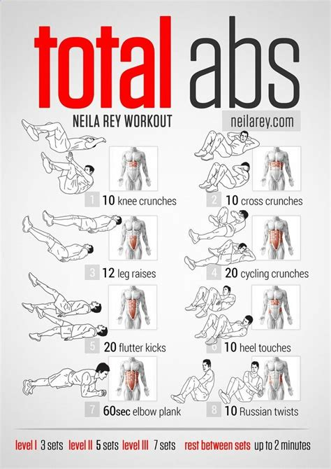 total abs workout lower abs abs obliques rectus