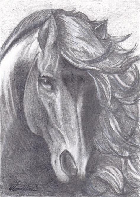 imagenes a lapiz de caballos dibujos de caballos lapiz car interior design