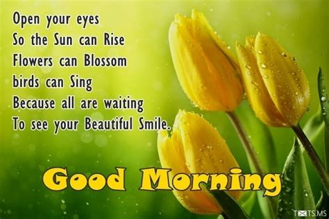 good morning sms quotes wishes messages images  facebook whatsapp picture sms txtsms
