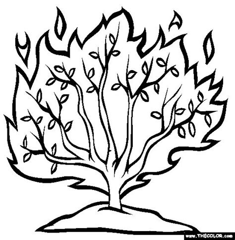 25 best ideas about burning bush craft on pinterest