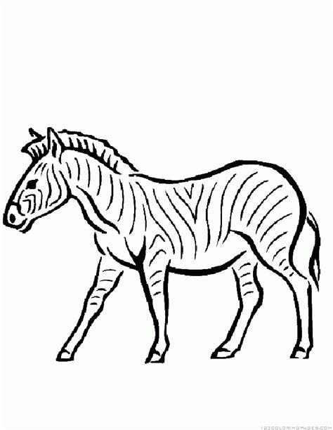 zebra fish coloring page zebra coloring pages