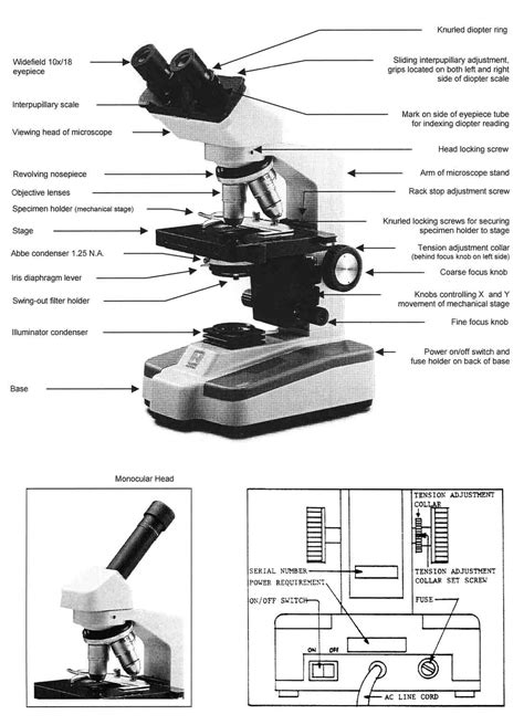 light microscope parts and functions worksheet microscope parts worksheet grass fedjp