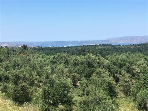 buying property and building a house buy a plot for building a house aslanidis estate in crete