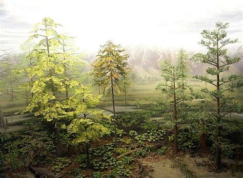 printable forest diorama 8 best images of printable diorama backgrounds