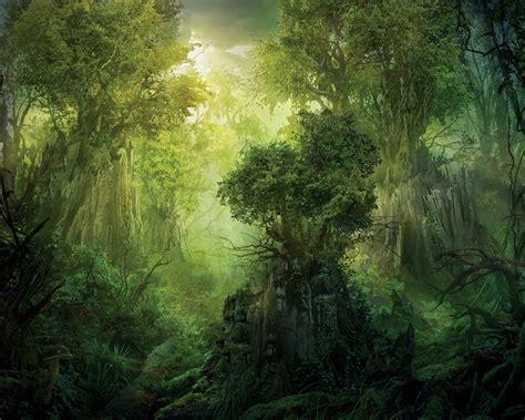free wallpaper jungle download jungle wallpaper 1280x1024 wallpoper 320912