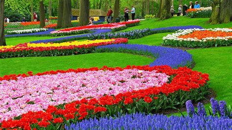 garden pictures flowers beautiful flower garden hd wallpaper www pixshark