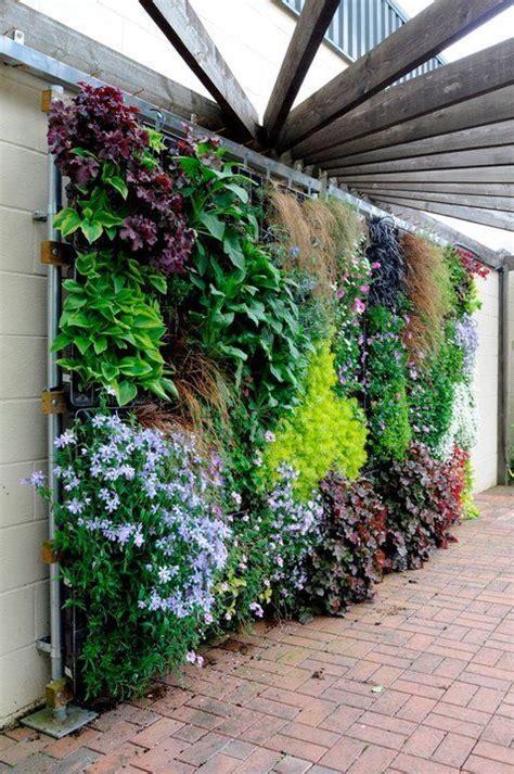 wall gardening best 25 wall gardens ideas on vertical garden