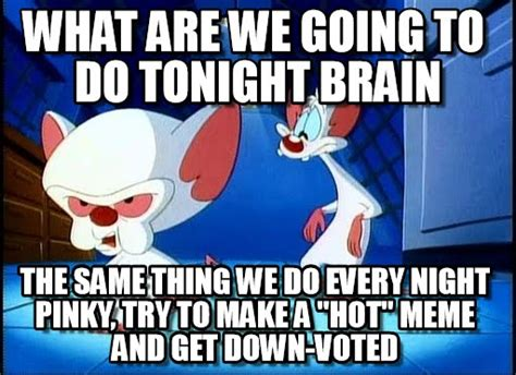 Pinky Meme - pinky and the brain meme 28 images brainbrainbrain