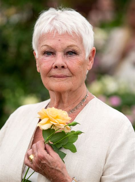 67 best judi dench as time goes by images on pinterest