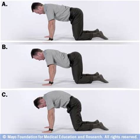 arching back four simple lower back exercises you can do at home galloway therapy