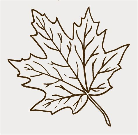 printable leaf art maple leaf cut out papers above for my kids to color