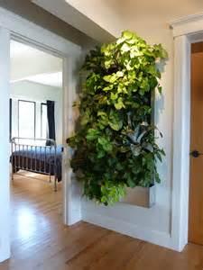 Vertical Garden Walls Plants On Walls Vertical Garden Systems Low Light