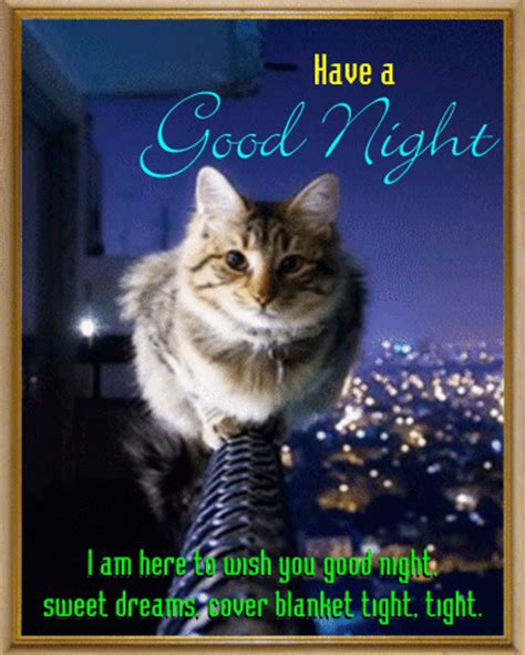 Goodnight Meme Cute - cute goodnight www pixshark com images galleries with
