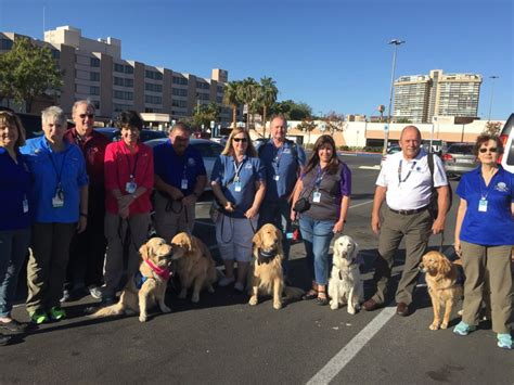 lcc comfort dogs therapy dogs comfort survivors of las vegas shooting